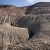 Petrified Foreest badlands