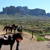 View of the Superstition Mountains from the Saloon patio. Apparently people from the surrounding neighborhoods ride their horses up to grab a bite. How cool is that?!