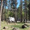 Diane (Sage) campsite