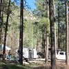 Mark & Peggy's campsite