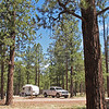 My campsite #25 at Rolfe C. Hoyer campground in Greer AZ. LOVE this place! No hookups here.