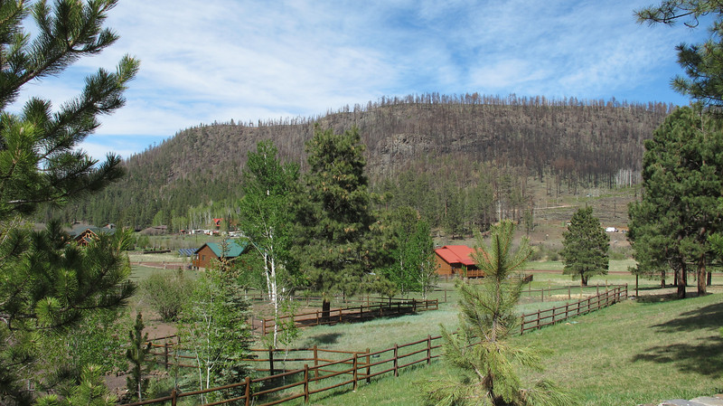 "View from the Greer Peaks Lodge & Restaurant of the 2011 Wallow Fire damage.  <a href=""http://en.wikipedia.org/wiki/Wallow_Fire"">http://en.wikipedia.org/wiki/Wallow_Fire</a>)"