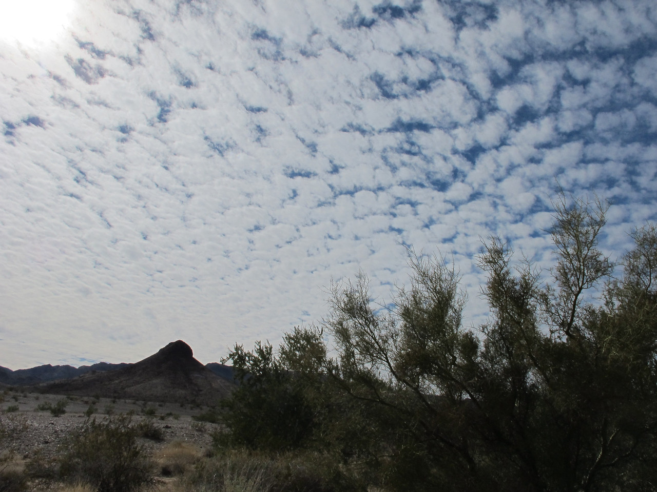 The first couple of days I was in Q, the clouds were plentiful. On this day, they resembled cotton balls.