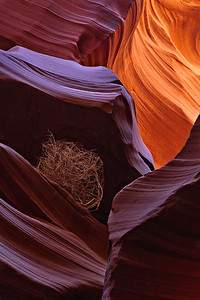 Trapped in Lower Antelope Canyon, AZ