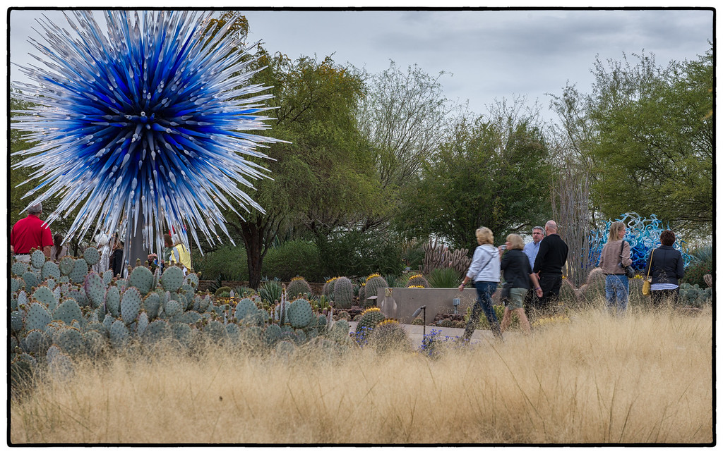 Chihuly at the Botanical Gardens Phoenix