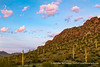 Picacho Peak State Park, Arizona