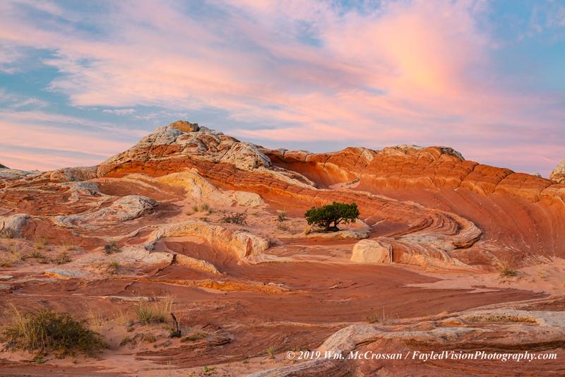 White Pocket, Vermilion Cliffs National Monument,AZ
