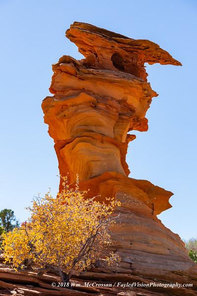 Vermilion Cliffs National Monument - Coyote Buttes South