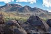Saguaro National Park (West)