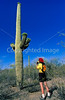 Biker studying saguaro while snacking in Organ Pipe Nat'l Monument, AZ - 2 - 72 ppi