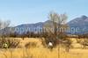 ACA - AZ 82, Sonoita to Patagonia - D2-C3-0244 - 72 ppi-2