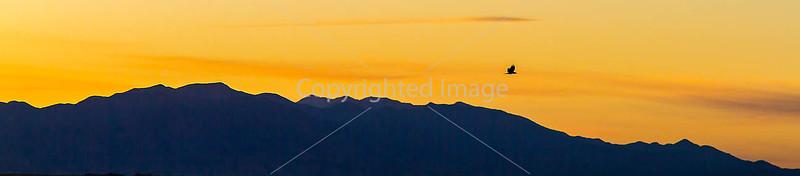 Arizona countryside near Sonoita - D3-C3#1-0011 - 72 ppi-2