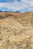 Scenery along AZ Hwys 83 & 82 near Sonoita & Patagonia - D2-C3-0206 - 72 ppi