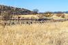 ACA - AZ Hwy 82, Patagonia to Sonoita - D3-C3#1- - 72 ppi-3