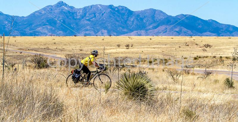 ACA -  Near Upper Elgin Rd & Hwy 82, Arizona - D3-C1- - 72 ppi