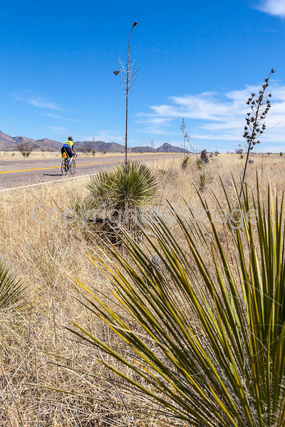 ACA -  Near Upper Elgin Rd & Hwy 82, Arizona - D3-C2-0123 - 72 ppi