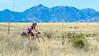 ACA -  Near Upper Elgin Rd & Hwy 82, Arizona - D3-C1-0104 - 72 ppi