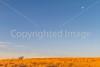 Arizona countryside near Sonoita - D3-C3#1-0029 - 72 ppi