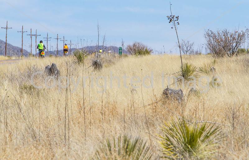 ACA -  Hwy 82 between Sonoita & Tombstone, Arizona - D3-C1-0129 - 72 ppi