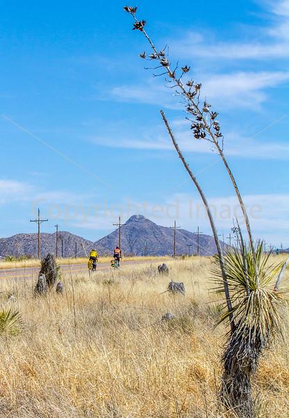 ACA -  Near Upper Elgin Rd & Hwy 82, Arizona - D3-C1- - 72 ppi-8