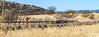 ACA - AZ Hwy 82, Patagonia to Sonoita - D3-C3#1- - 72 ppi-4