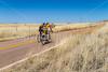ACA - North of Elgin, Arizona, toward  Hwy 82 - D3-C3#1-0239 - 72 ppi