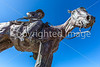 Statue in Sonoita, Arizona - D3-C2-0058 - 72 ppi