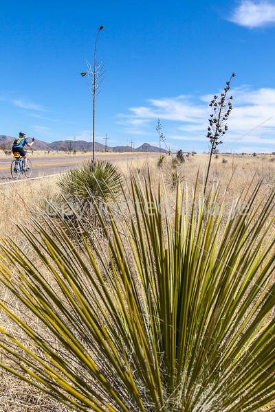 ACA -  Near Upper Elgin Rd & Hwy 82, Arizona - D3-C2-0126 - 72 ppi