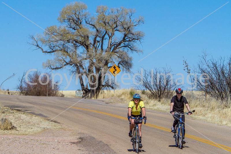 ACA -  Cyclists near Elgin, Arizona - D3-C1-0063 72 ppi