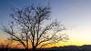 Arizona countryside near Sonoita - D3-C3#1-0004 - 72 ppi