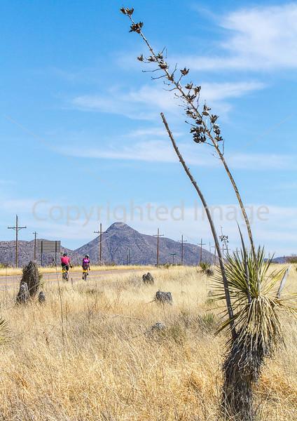 ACA -  Hwy 82 between Sonoita & Tombstone, Arizona - D3-C1-0118 - 72 ppi