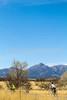 ACA - AZ 82, Sonoita to Patagonia - D2-C3-0241 - 72 ppi