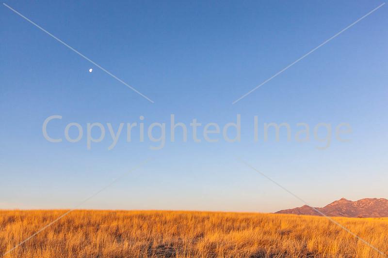 Arizona countryside near Sonoita - D3-C2-0005 - 72 ppi