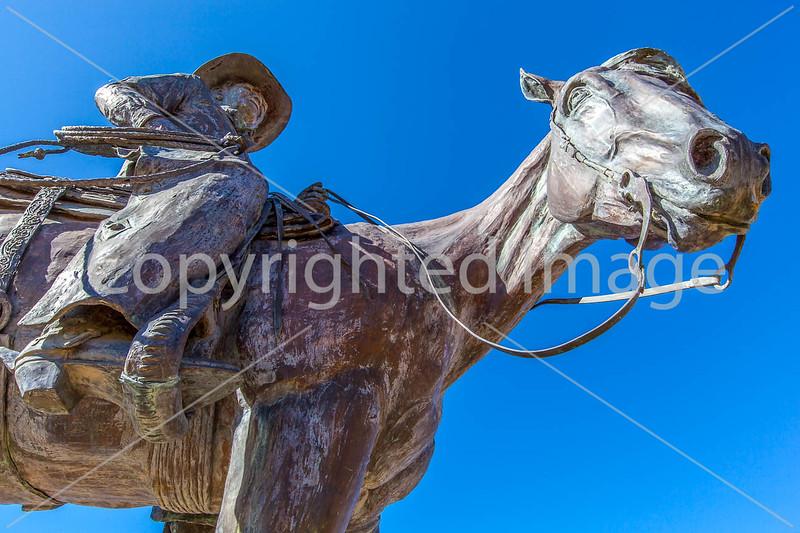 Statue in Sonoita, Arizona - D3-C2- - 72 ppi-2