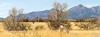 ACA - AZ 82, Sonoita to Patagonia - D2-C3- - 72 ppi-4