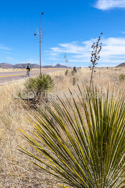 ACA -  Near Upper Elgin Rd & Hwy 82, Arizona - D3-C2-0128 - 72 ppi