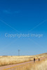 ACA - North of Elgin, Arizona, toward  Hwy 82 - D3-C3#1-0243 - 72 ppi