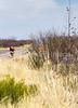 ACA -  Hwy 82 between Sonoita & Tombstone, Arizona - D3-C1- - 72 ppi-6