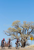 ACA -  Cyclists near Elgin, Arizona - D3-C1- 72 ppi