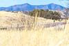 ACA - AZ 82, Patagonia to Sonoita - D3-C1- - 72 ppi-2