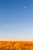 Arizona countryside near Sonoita - D3-C3#1-0025 - 72 ppi