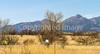ACA - AZ 82, Sonoita to Patagonia - D2-C3-0244 - 72 ppi