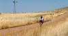 ACA - North of Elgin, Arizona, toward  Hwy 82 - D3-C3#1-0231 - 72 ppi