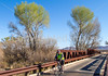 ACA - Rider(s) between Bisbee & Sierra Vista, Arizona - D6-C3-0053 - 72 ppi