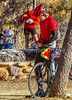 ACA - Cyclists and staff in camp in Bisbee, Arizona - D6-C1- - 72 ppi-2