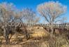 ACA - Rider(s) southwest of Tombstone, Arizona - D6-C3-0287 - 72 ppi-2