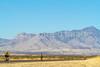ACA - Riders southwest of Bisbee, Arizona, on US 92 - D6-C1-0181 - 72 ppi