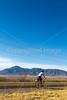 ACA - Rider(s) southwest of Bisbee, Arizona, on US 92 - D6-C3-0028 - 72 ppi