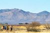 ACA - Whitewater Draw Wildlife Area near Bisbee, Arizona - D5-C1-0053 - 72 ppi