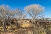 ACA - Rider(s) southwest of Tombstone, Arizona - D6-C3-0287 - 72 ppi